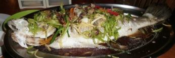 gedämpfter Fisch (leicht und aromatisch)