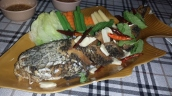 Steinkopf-Fisch Curry (es macht Spaß auf den Kopf zu klopfen)