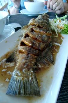 gebratenen Fisch mit Thai Sauce