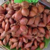 Schlangenfrucht (süß-säuerlich)