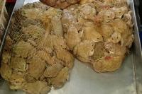 lebende Bullfrogs gibt es Säckeweise zu kaufen -lecker!-