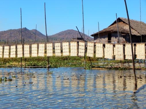 Nudeln trocknen am Inle Lake, Myanmar