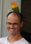 Besuch von einem schönen Papagei. Erholungsphase nach Kollision mit Nachbars Fenster