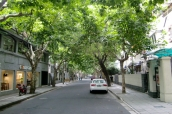 French Concession, sind sie nicht wunderschön die grünen Alleen... ich liebe diesen Stadtteil.