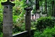 Schöne Eindrücke im Klostergarten.