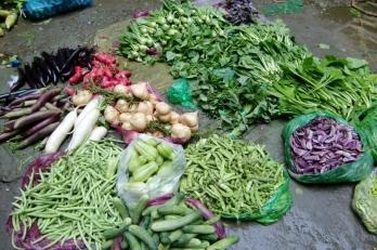 Gemüse so viel man möchte und so vielfältig.