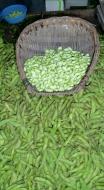 Sojabohnen auch Adamame genannt. Sie werden in Schale oder auch gepult verkauft und gegessen.