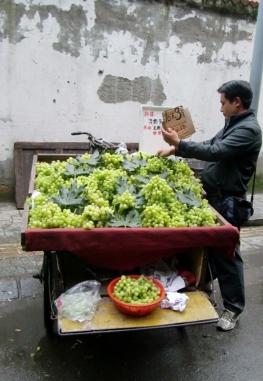 Der Traubenverkäufer ist gerne mobil und stellt sich dort hin wo Kunden vorbeikommen.