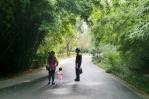 Viele schöne Wege führen durch den Park.