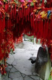 Die Bänder sollen Glück bringen und werden an Bäume gehängt. Ein Volkssport in China.