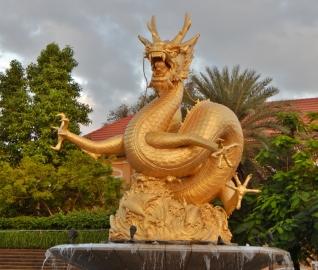 Ein goldener Drache in seinem Element