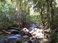 der Weg zum Wasserfall