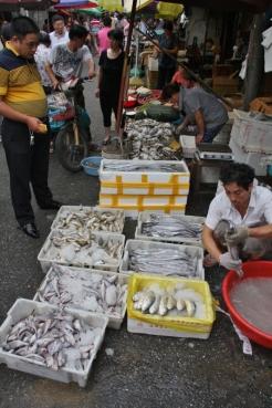 Der frische Fisch wird einfach auf der Straße verkauft.
