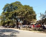 Die Wäsche trocknet am Straßenrand in der Sonne.