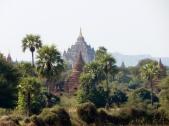 """Die """"Pyramide"""" in der Ferne. Wunderschön ist, dass so die Stupas aus dem Jungle herausragen."""