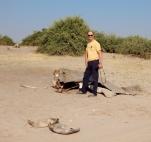 Nur noch die Haut und ein paar Knochen sind von dem Elefanten übrig geblieben.
