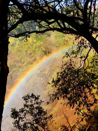 Regenbogen an den Victoria Fällen.