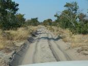 Jetzt geht ein Stück durch den Chobe NP. Die Straßen in Botswana sind keine Pads mehr, sondern Sandpisten. Häufig auch sehr tiefer Sand. Das muss dann unser 4x4 tüchtig arbeiten.