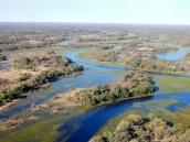 Das Okawango Delta von oben.