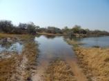 Die Wege im Okawangodelta sind nicht immer einfach zu befahren. Tiefer Sand wechselt sich mit Wasser ab.