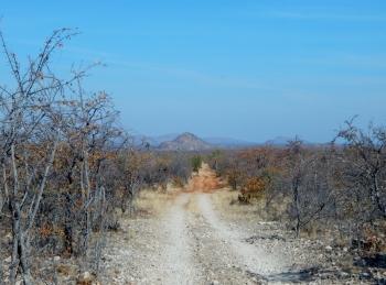 Weiter geht es durch den Tulli Block nach Süd Afrika.