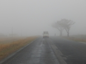 Leider war die Strecke an der Ostküste entlang nicht die beste Wahl. Wir hatten zwei Tage Regen und Nebel.