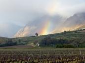 Am Morgen ein schöner Regenbogen.
