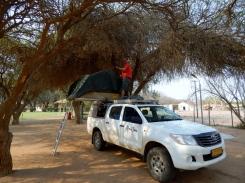 Wenn die Bäume zu niedrig sind. Schnell mal aufs Dach und freigeschnitten.