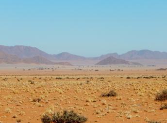 Die ersten Dünen sieht man im Hintergrund.