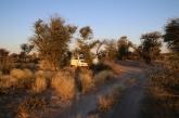 Die Zentral Kalahari, Campsits ohne Strom und Wasser.